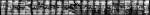 MENT IRE . Viaggio nell'archivio urbano,1996, cm 78x780 (72 fotografie cm 24x30,5) part; Photographer Riccardo Pieroni